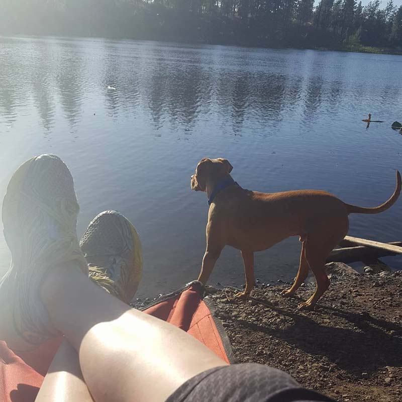 Dog Fishing & First Aid