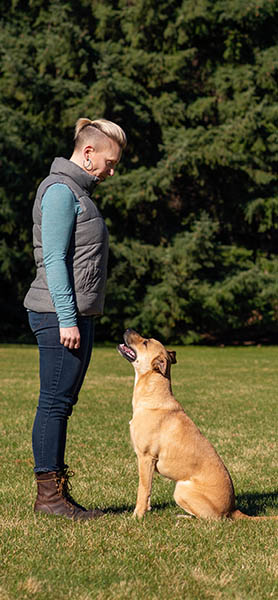 Dog Training in Spokane, WA