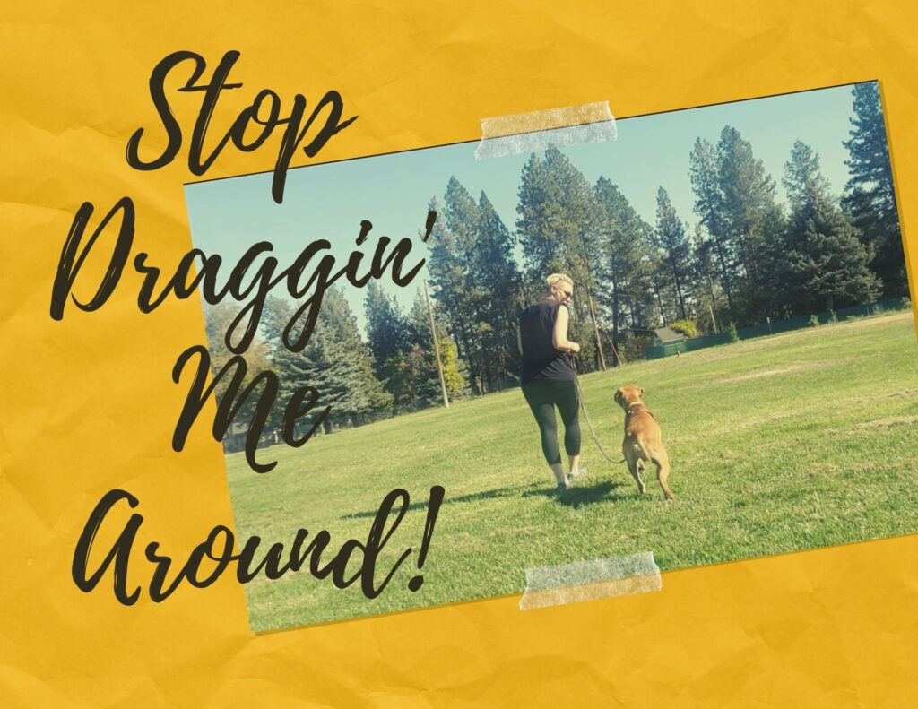 Stop Draggin' Me Around - Dog Training Video