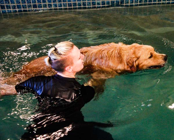 Hydrotherapy Dog Trainer and Instructor - Canine Water Therapy